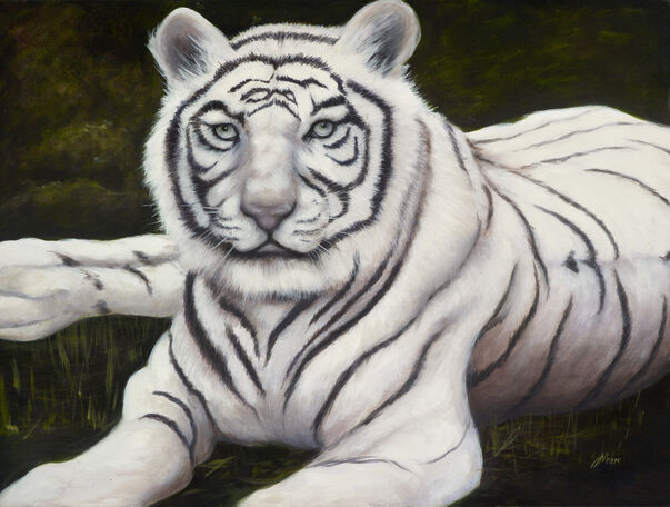 Oil painting of white tiger in the jungle