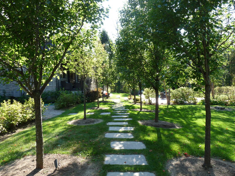 tree lined natural square cut  stepping stone pathway leading to estate back yard with pool