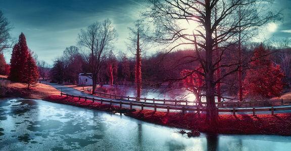 Winter in Spring Grove