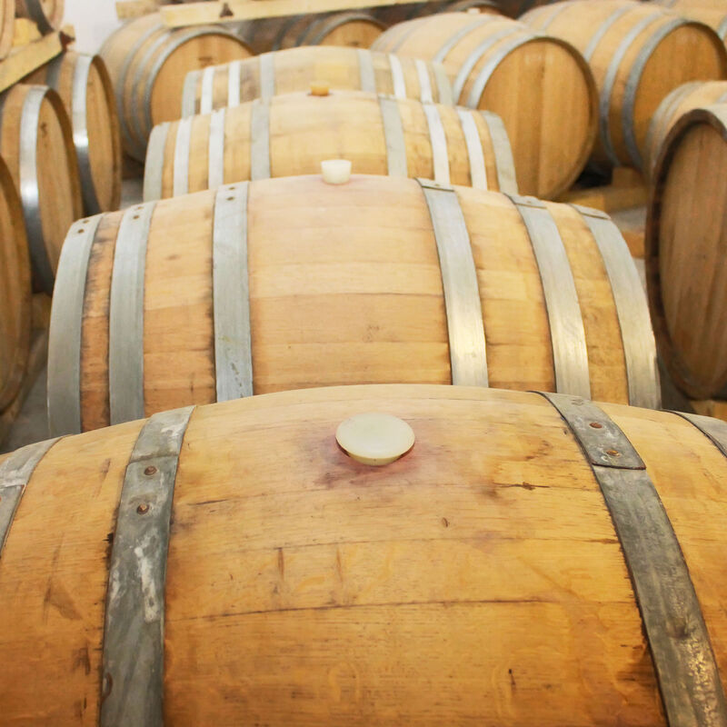 Apricot Brandy Barrels in refill-ready condition