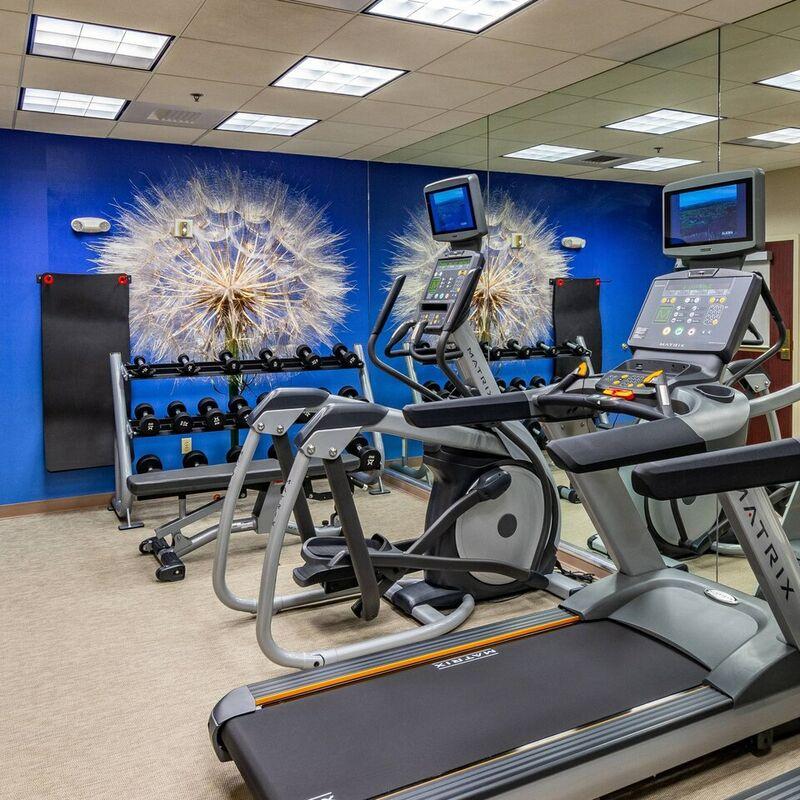 faish fitness 7579 hor clsc