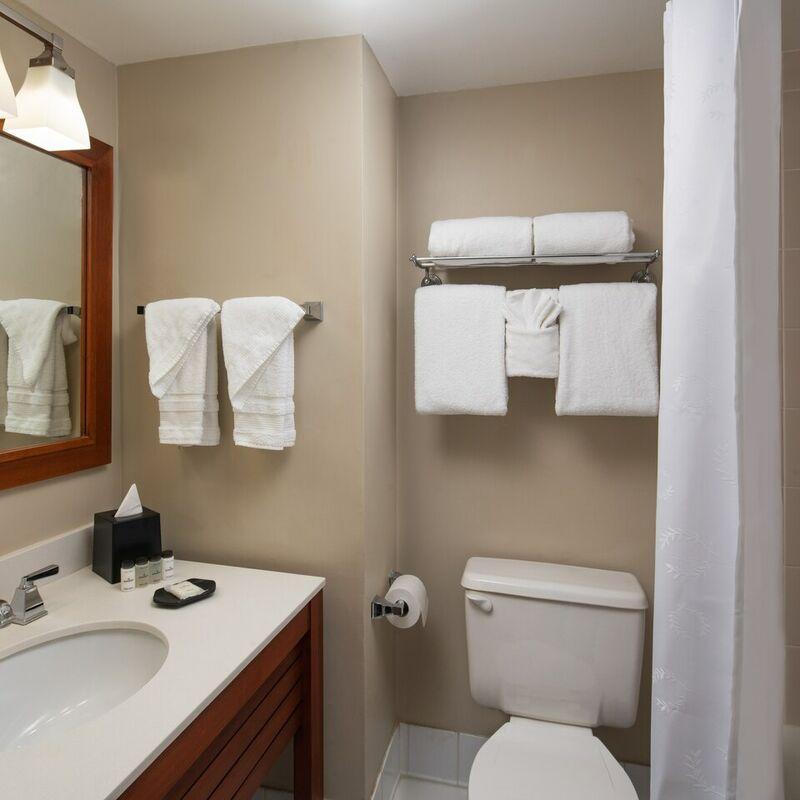 fllsc guestroom bathroom 2580 hor clsc