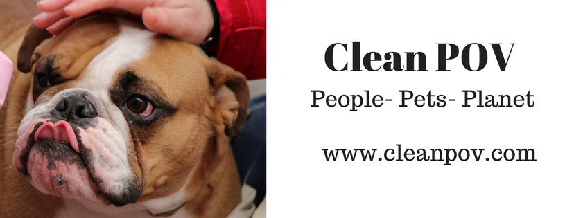 Clean POV (4)