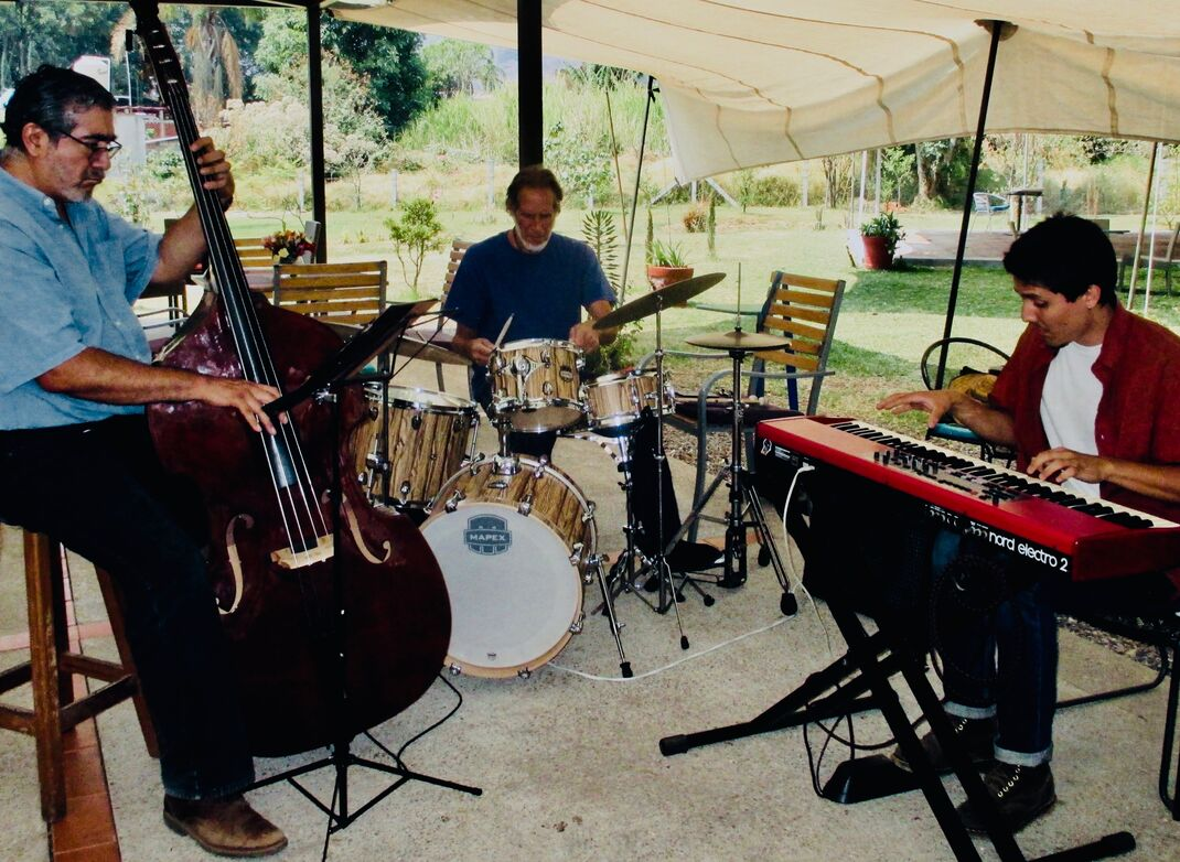 Here's the band playing under a large tarp surrounded by lawn with potted plants. Upright bass, drums, and keyboard.