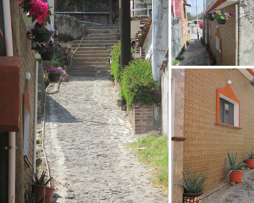 Left:  Narrow cobble stoned alley leading up to stairs where the houses have potted plants hanging and on the ground. Right: Images feature the plants with red flowers (hanging) and long green succulent leaves in ground pots.