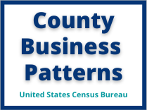 County Business Patterns 209x156