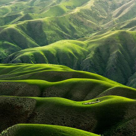 Peanutbutter seo green mountains landscape