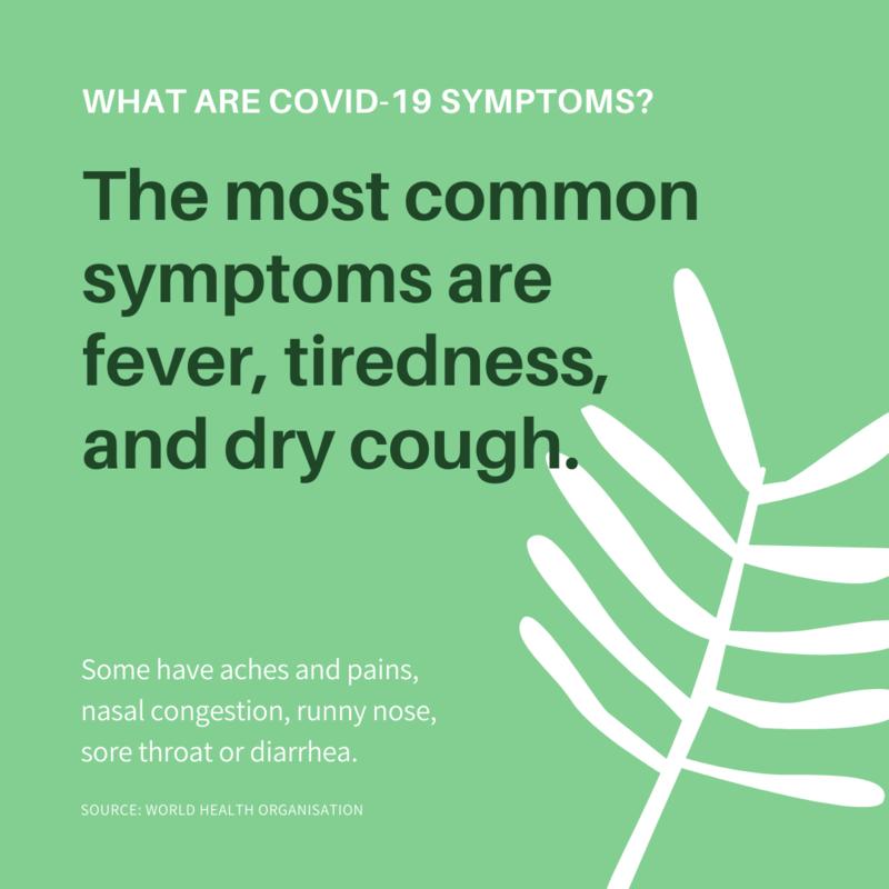 what is Coronavirus 3