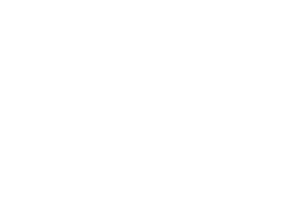 mid bridal logo by Mirela Iorgoni design