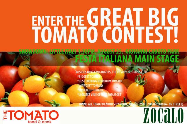 TomatoContest Web
