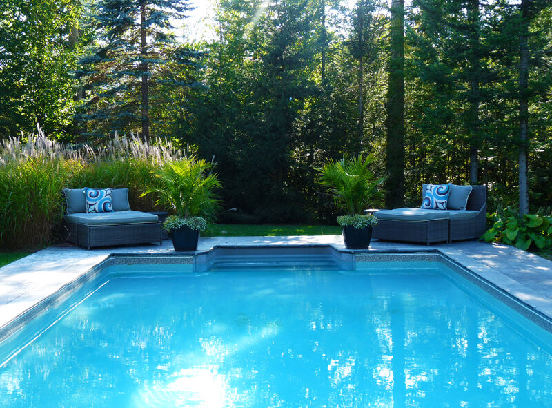 poured concrete pool patio surrounding modern rectangular pool with two day beds and lush ornamental grasses