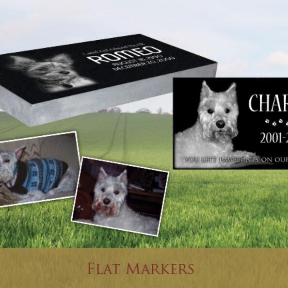 Pet Flat Markers 03 SN