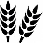 Wholesale grains and bird seed supplier