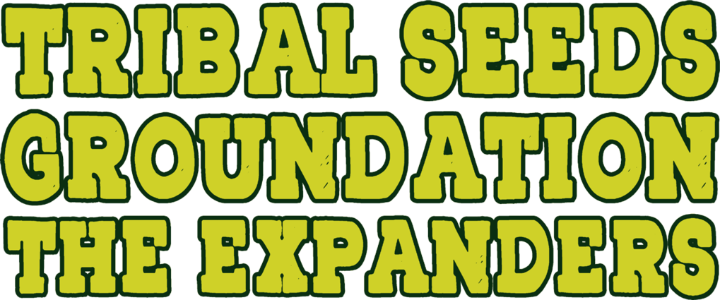 Tribal Seeds, Groundation & The Expanders to perform live at the Irie Music Festival in San Diego, California